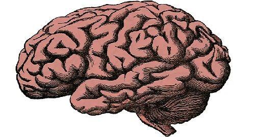 reflexiones, pensamientos, citas, meditación, consideración, consejo, advertencia, ejemplo, mención, referencia, razonamiento, máxima, idea, proverbio, frase, axioma, juicio, inteligencia, concepto, frase, canalmenorca.com