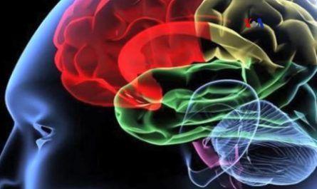 Contaminación, polución, nocivo, alzheimer, funciones cognitivas, Universidad Boston, Beth Israel Deaconnes Medical Center, BIDMC, derrame cerebral, Demencia, medicina, cura, salud, canalmenorca.com