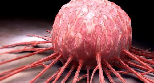 Descubren un VIRUS que Promete Destruir TODOS los Tipos de CÁNCER