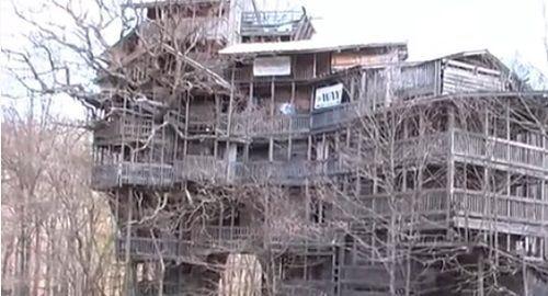 Enorme Casa-Árbol con 80 habitaciones y 100 metros de altura