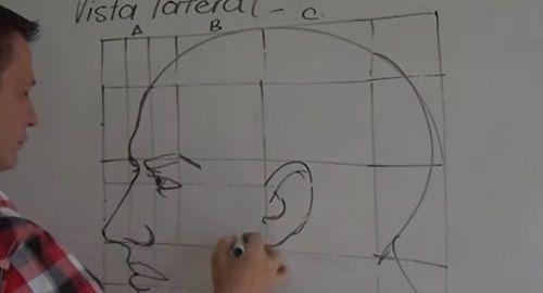 Cómo dibujar un Rostro (Vista Lateral)