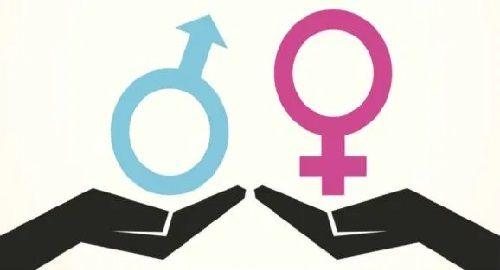 Igualdad de Género, «los estereotipos nos dañan a todos»