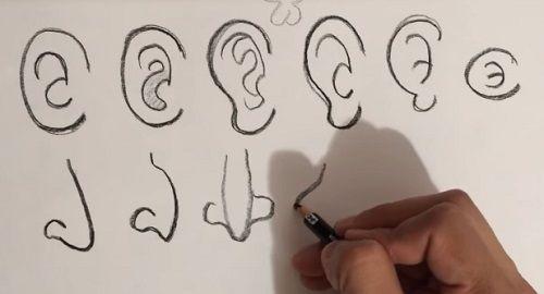Dibujar CARICATURAS: Orejas y Narices