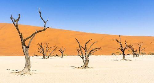 Deadvlei «Lago de Arcilla blanca» Namibia