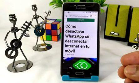 Desactivar, Whatsapp, Desconectar, Internet, Móvil, Tutorial, Desconexión, Redes, Menú, Configuraciones, Aplicaciones, Forzar, Detención, Virtual, Navegador, Android, canalmenorca.com