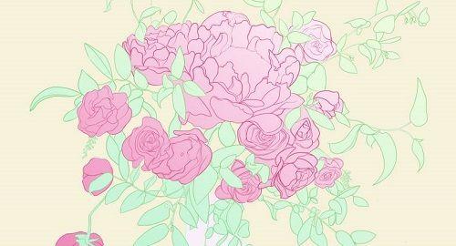 Peonias (Rosa)