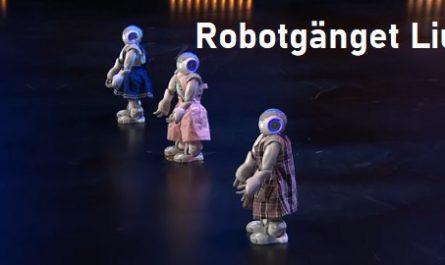 vídeos, asombrosos, increíbles, pasmoso, sorprendente, admirable, fascinante, mágico, milagroso, portentoso, prodigioso, sobrehumano, increíble, fenomenal, sensacional, estupendo, extraordinario, desconcertante, Robots, Androides, Humanoides, Informáticos, Computerizados, Electrónicos, Balilando, Talent Show, Robotgänget Liu, canalmenorca.com