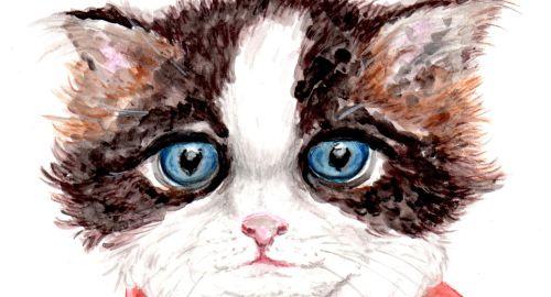 Lindo gatito, acuarela