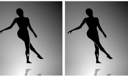 ALUCINACIÓN, AMBIGUO, DELIRIO, DISTORSIÓN, REALIDAD, ESPEJISMO, FANTASÍA, IDEA, FALSA ILUSIÓN, ÓPTICA IMPOSIBLE, INCREÍBLE, cuadratura círculo, BAILARINA que gira, Nobuyuki Kayahara, Spinning Dancer, canamenorca.com