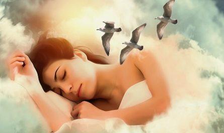 Salud, salubridad, sanidad, lozanía, robustez, fortaleza, vigor, vitalidad, energía, Alegría, Beneficios, Siesta, Dormir, adormecerse, adormilarse, reposar, descansar, yacer, quedarse frito, modorra, Sueño, Acostarse, Descansar